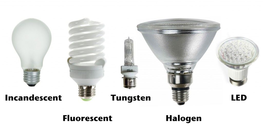 Learn About All The Different Types Of Light Bulbs Available, And What To  Look For