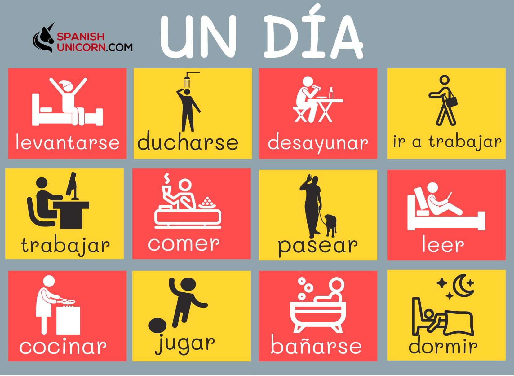 Rutina Diaria En Espanol