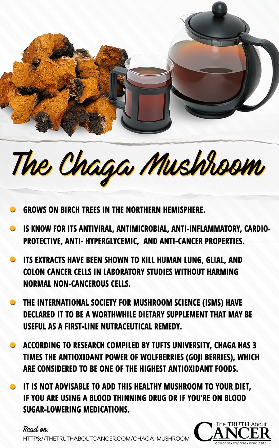 Chaga Mushroom facts backed by studies. Click on the image ...