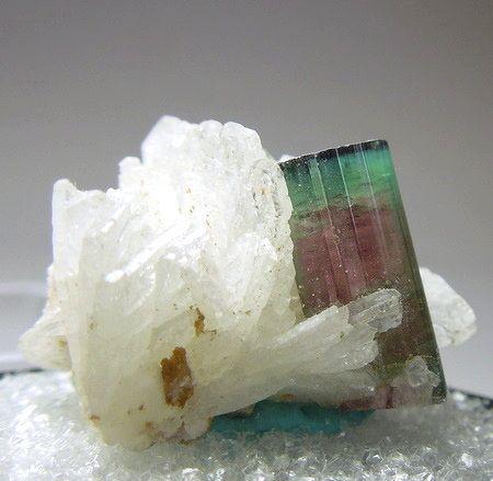 Bicolored Tourmaline On Albite
