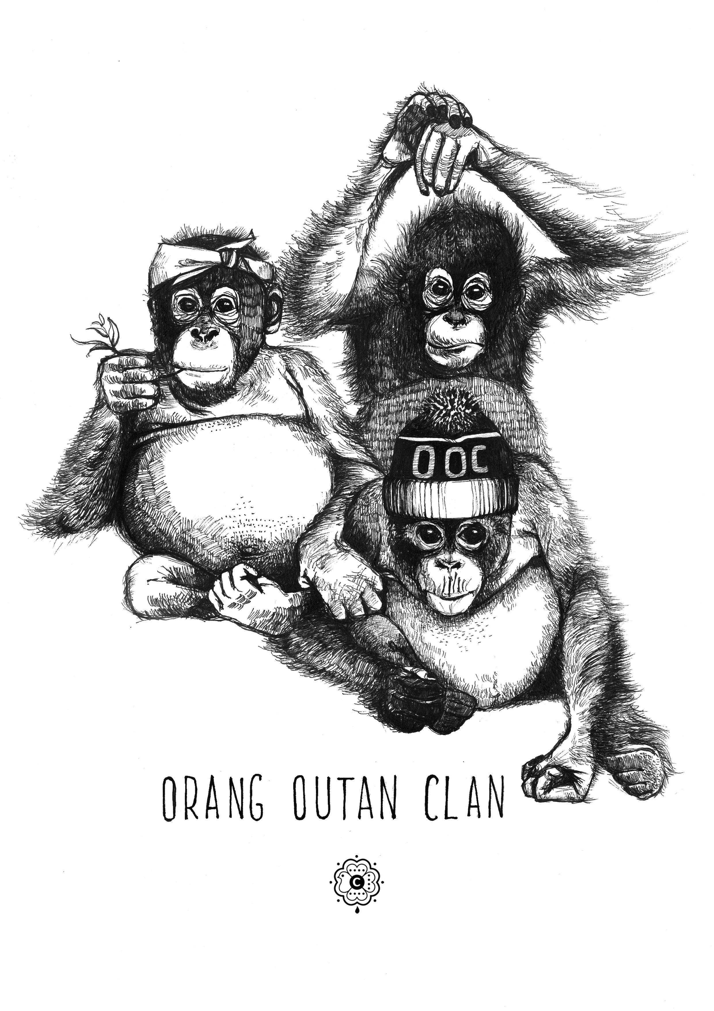Orang Outan Clan Illustration Clémence Thienpont