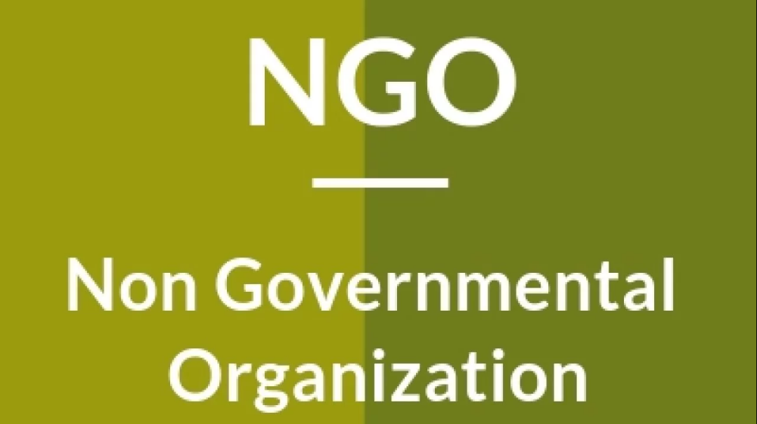 13 Non Governmental Organization ideas   non governmental organization,  organization, north korean famine