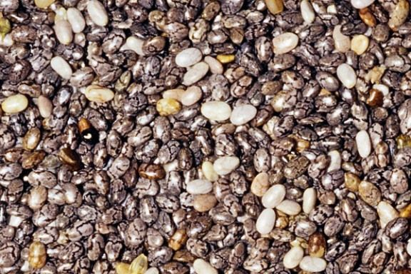 Chia seeds are also a good source of the plant omega-3 fatty acids ALA and protect against inflammation, arthritis and heart disease.