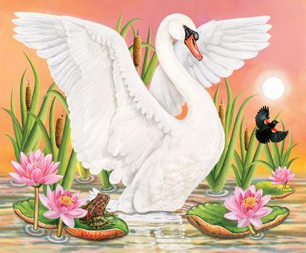 Swan, Frog And Blackbird At Sunset   ©ROSILAND SOLOMON