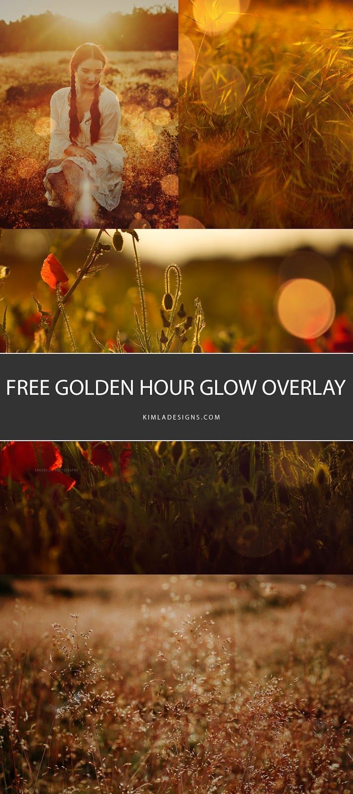 KIMLA DESIGNS: Free Golden Hour Glow Overlay for Photographers