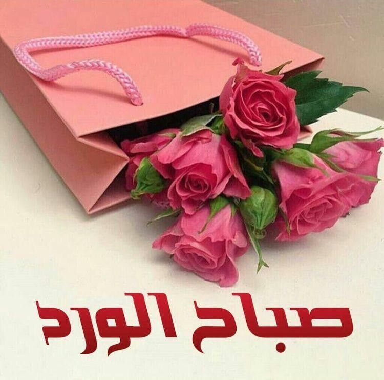 Pin By Mary On الصباح والمساء In 2020 Good Morning Arabic Good Morning Images Flowers Good Morning Greetings