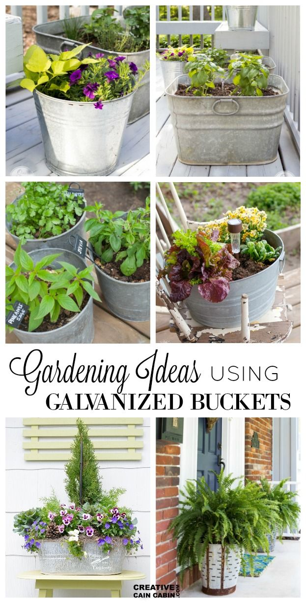 Small Space Container Gardening Ideas – Patio plants