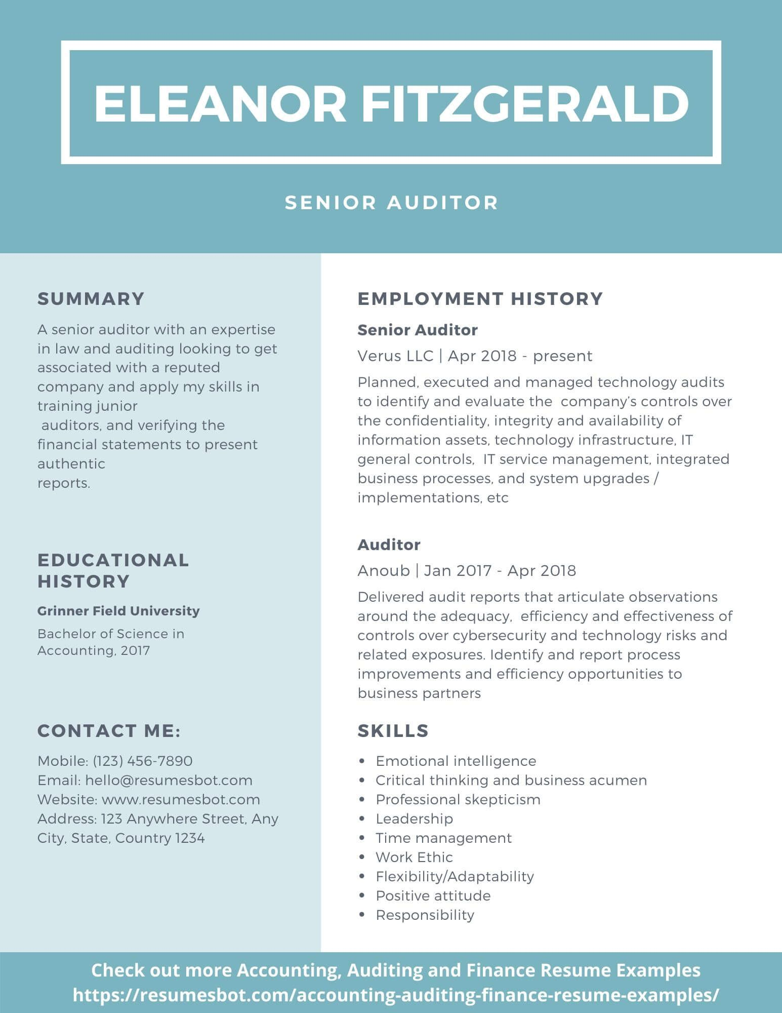 Auditor Resume Sample Example And Tips Pdf Doc Auditor Resumes Bot Resume Template Examples Resume Objective Statement Unique Resume