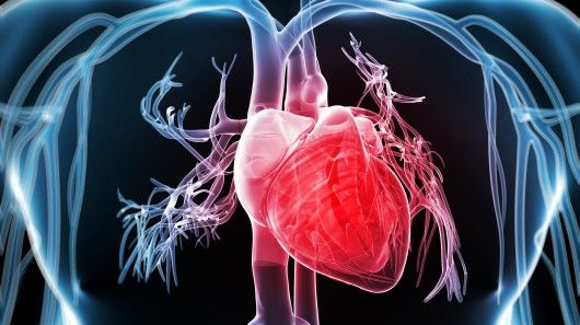 Gene Therapy Converts Heart Cells Into Biological Pacemakers Disease Fighting Heart Healthy Exercise Heart Disease