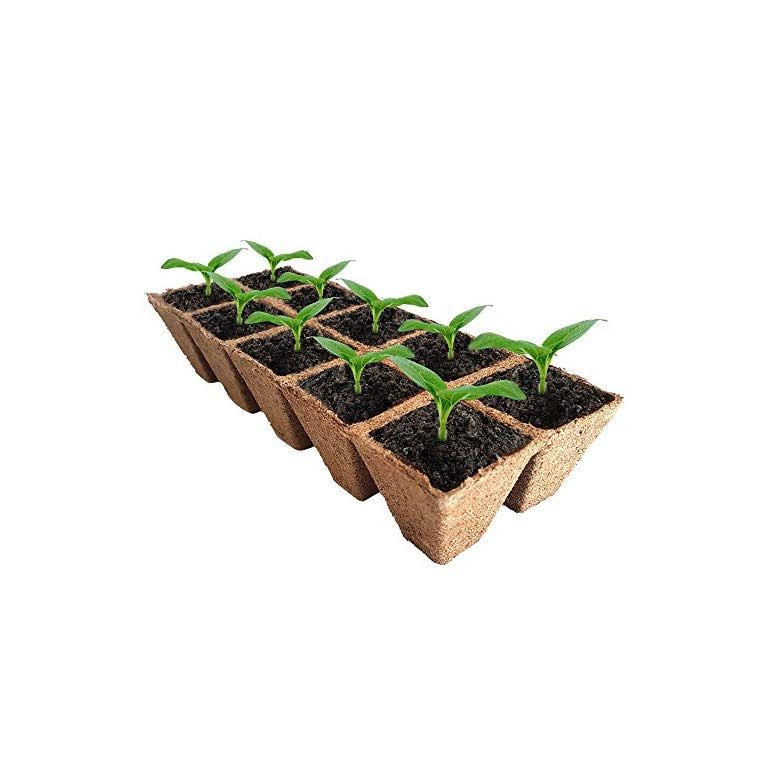 Diy Biodegradable Pots: Seed-Starter-Peat-Pots-Kit-Germination-Seedling-Trays-are