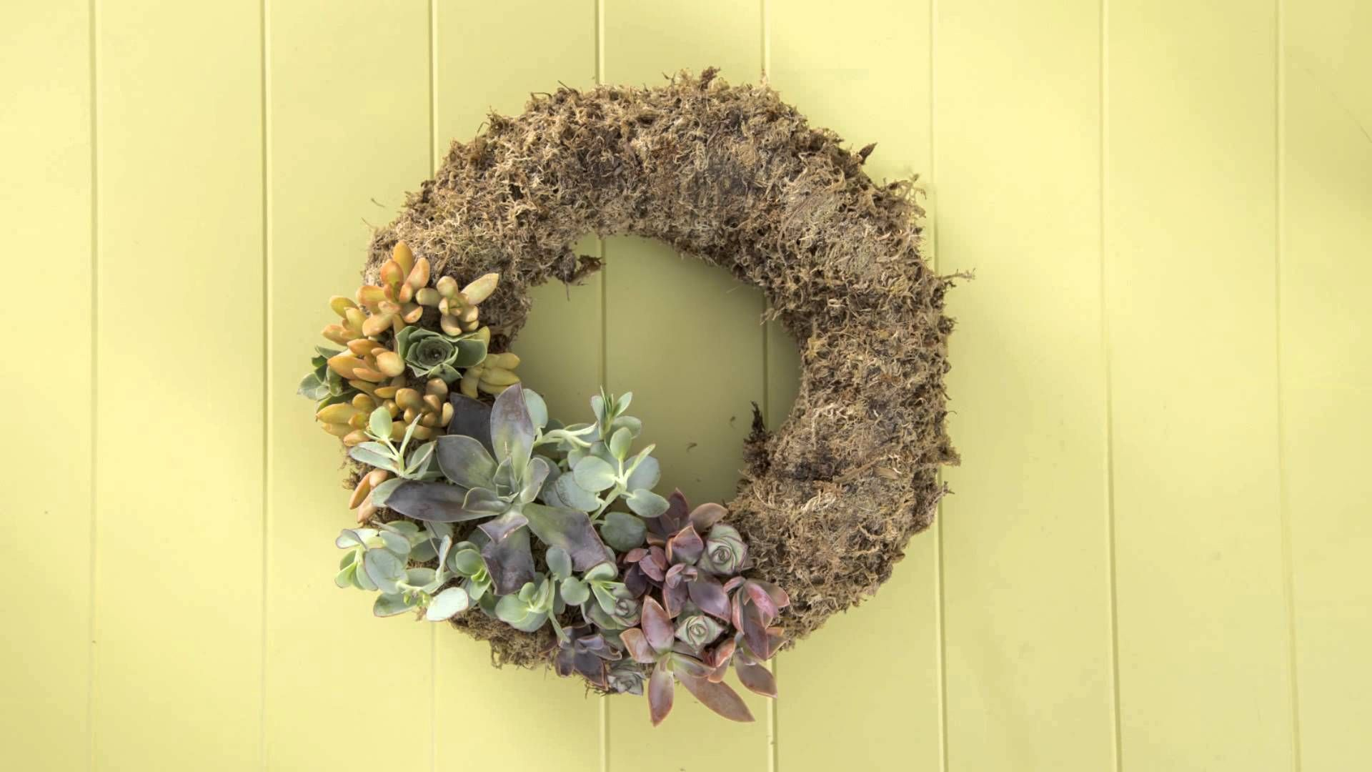 Make A Living Wreath With Succulents Gardening