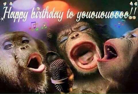 Pin By Susie Hendricks On Happy Birthday Funny Happy Birthday Pictures Happy Birthday Pictures Happy Birthday Meme