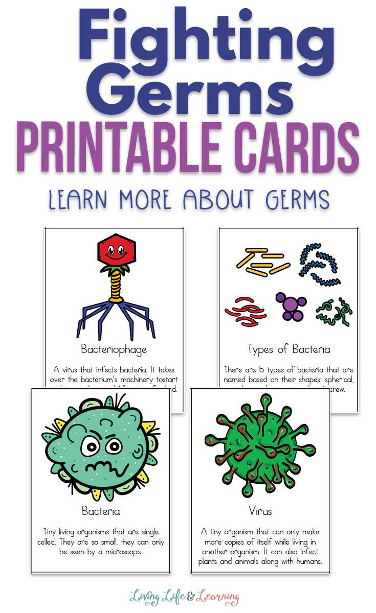Fighting Germs Printable Cards Germs For Kids Homeschool Science Homeschool Science Experiments [ 1200 x 735 Pixel ]