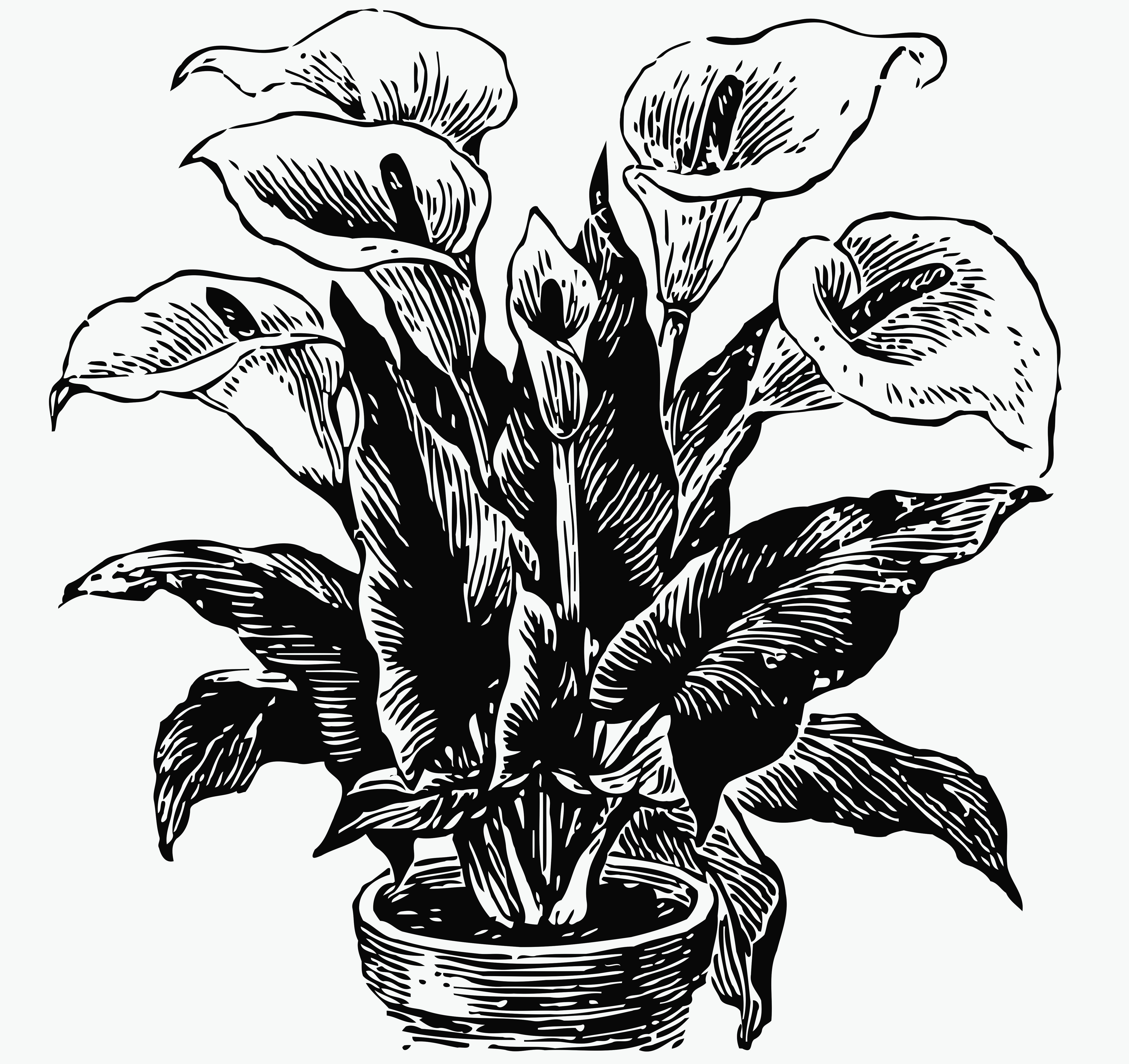 альбома тильда цветок женское счастье картинки срисовать проводит наглядные
