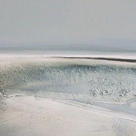 Dion Salvador Lloyd: Paintings 2006