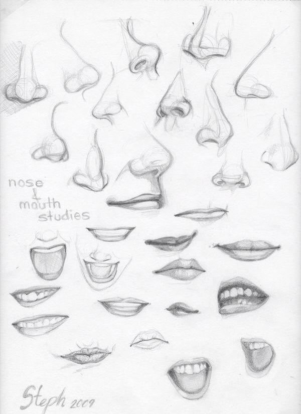 Parts of the face   Drawing People   Pinterest   Face, Drawings and ...