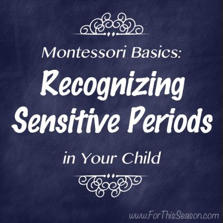 montessori quotes and sensitive periods 102 quotes from maria montessori: 'imagination does not become great until human beings, given the courage and the strength, use it to create', 'our care of the.