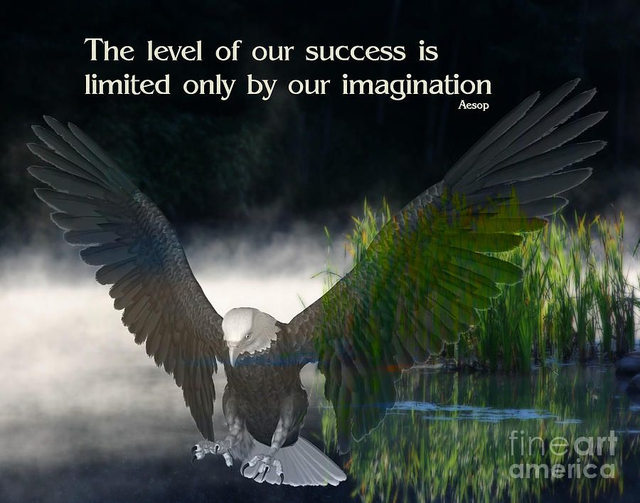 Imagination Eagles Quotes Inspirational Posters Success Quotes