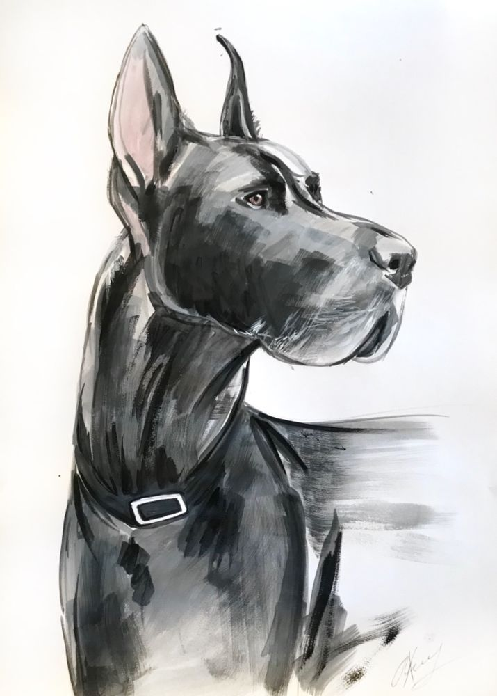 Acrylic Painting On Paper Dog Great Dane 21x16inch Ebay Paper