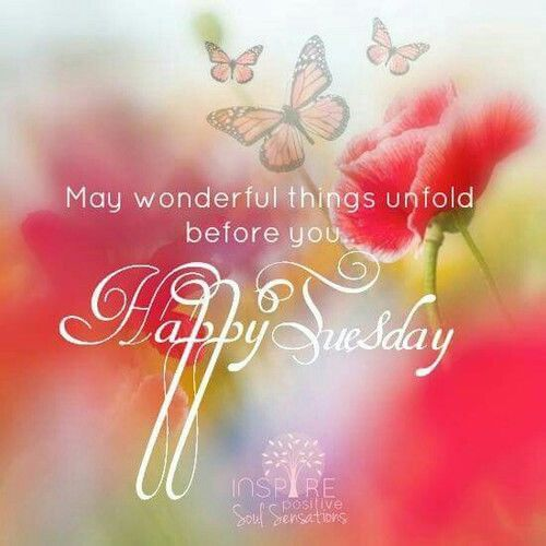 May Wonderful Things Unfold Before You Happy Tuesday Tuesday Quotes Good Morning Happy Tuesday Quotes Happy Sunday Quotes