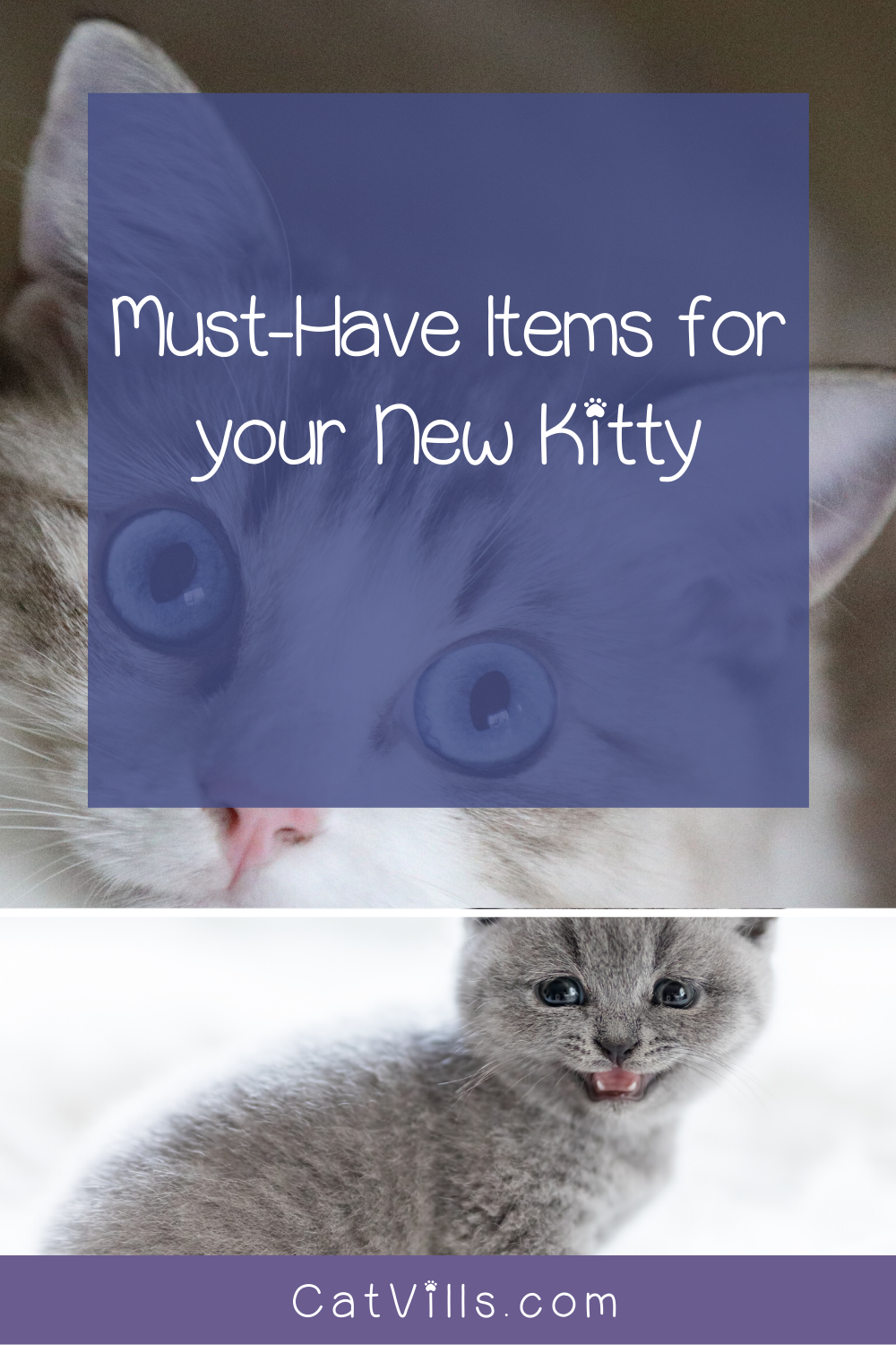 New Cat Checklist For Bringing Kitty Home In Style In 2020 Litter Training Kittens Cat Checklist Cats