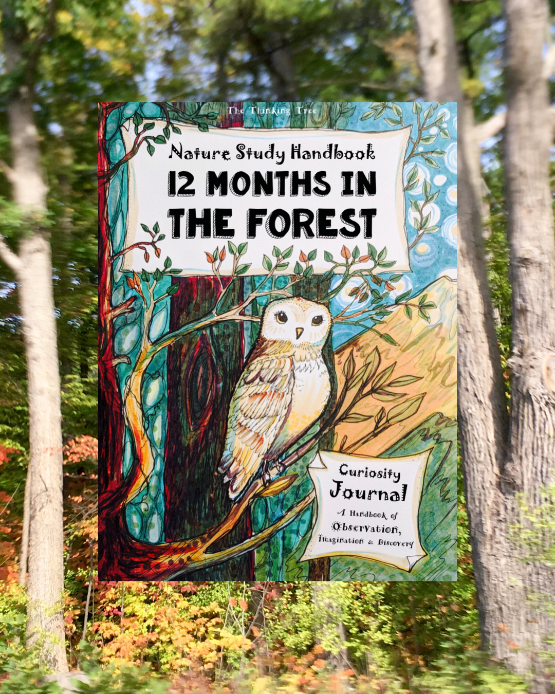 Nature Study Handbook 12 Months In The Forest Funschooling