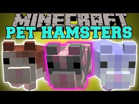 Minecraft Pet Hamsters Breed Them Sit On Your Head Hamster Balls Mod Showcase Http Www Doggietalent Com Minecraft Dogs Minecraft Cat Minecraft Horse
