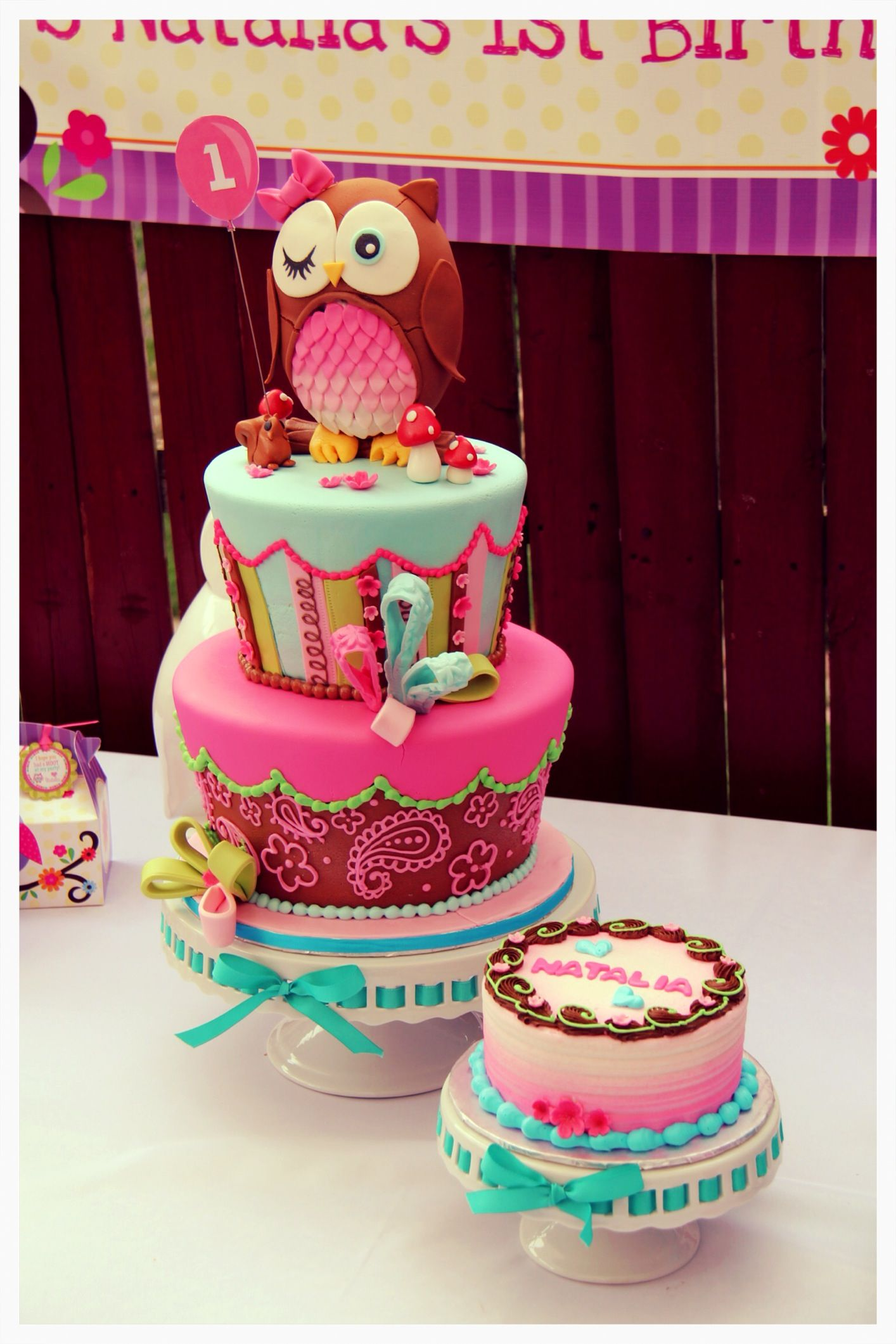 Owl cake My Cakes Pinterest Owl cakes Owl and Cake