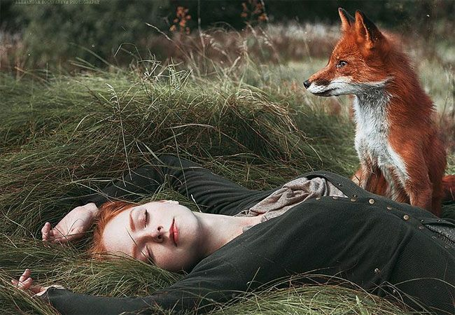 redhead pictures model red fox