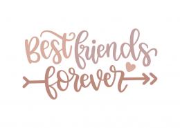 Best Friends Forever Best Friends Forever Quotes Friends Forever Quotes Forever Quotes