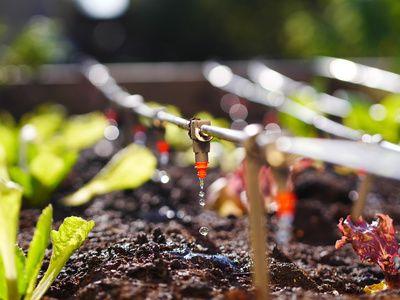 Automatisches Bewässerungssystem Balkon Ideen