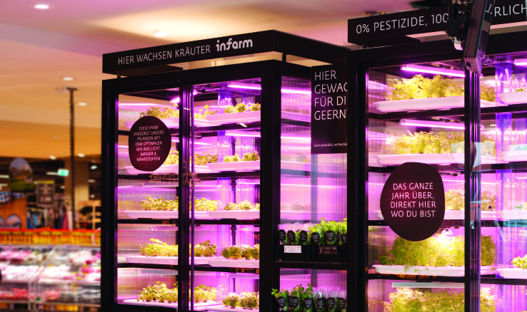 Infarm A Startup That Has Developed Vertical Farming Tech For Grocery Stores Restaurants And Local Distribution Vertical Farming Urban Farming Indoor Farming