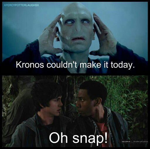 Fandom Memes #2 - Percy Jackson/Harry Potter section ...