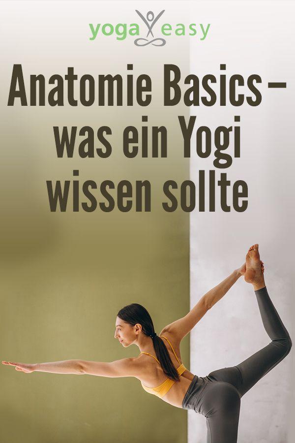 Anatomie-Basics – was ein Yogi wissen sollte #pilatesworkoutvideos