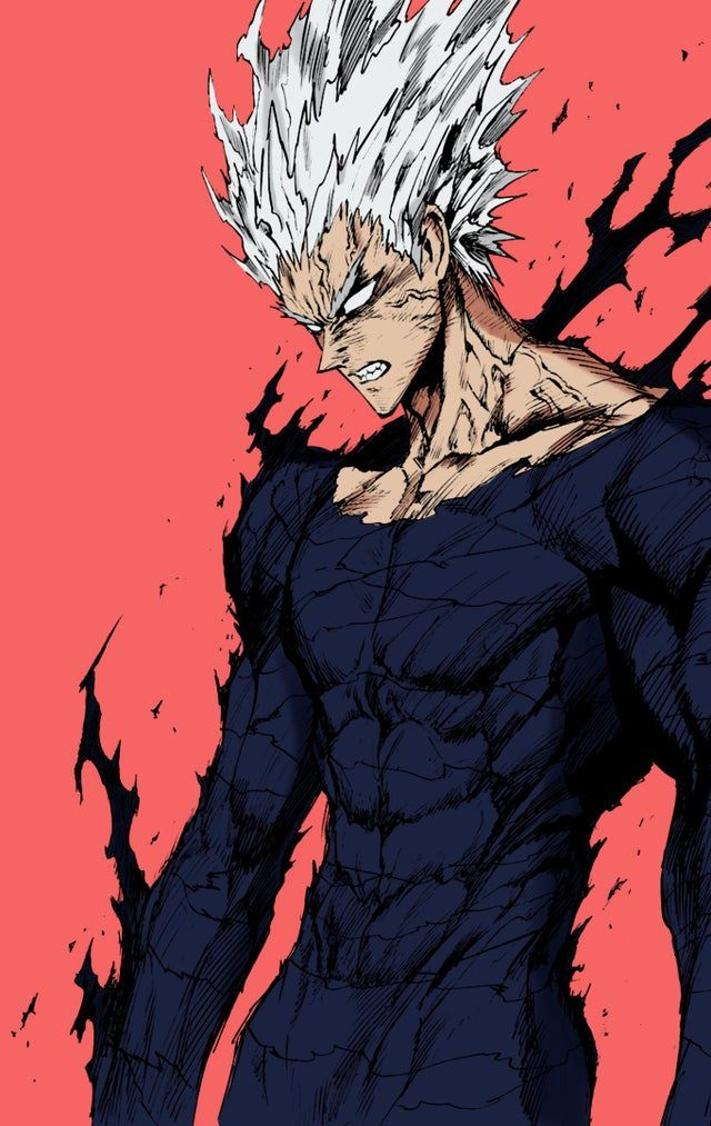 colored Garou OnePunchMan (With images) One punch man