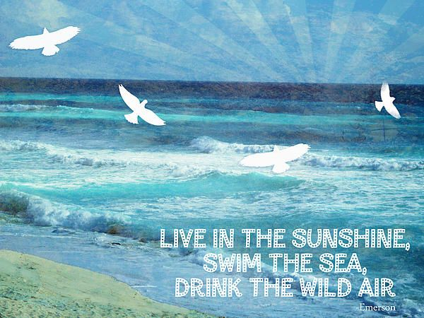 words to live by the sea by tia helen blue sky quotes ocean