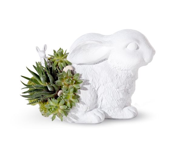 PlantTheFuture