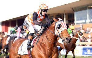 EQUUS CHAMPION SPRINTER NOMINEES - SAHorseracing.COM - South African Horseracing…