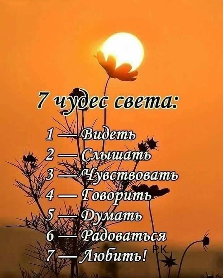 #pinterest #пинтерест #attuale #красивосказано #жизнь # ...