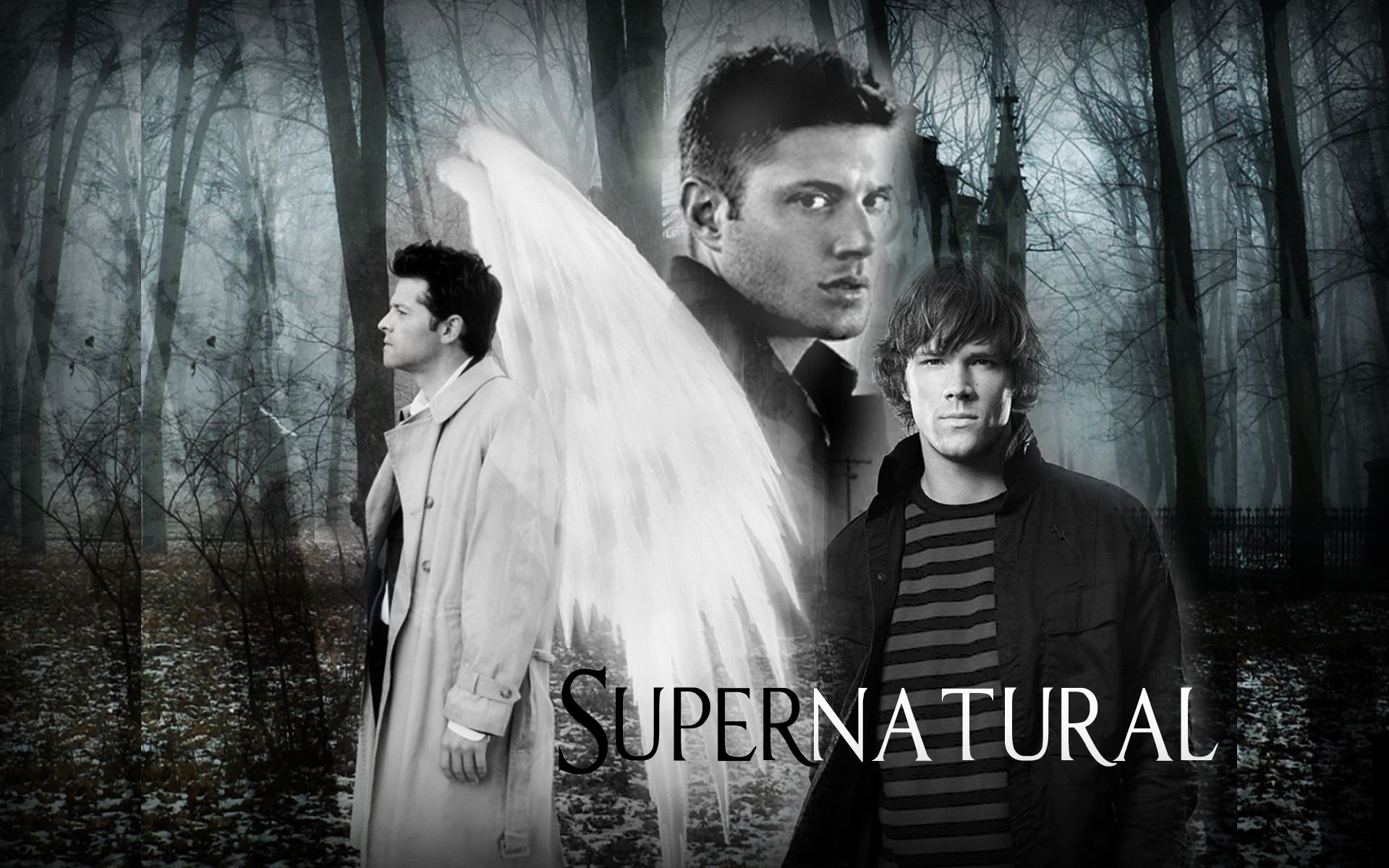 Supernatural TV Show Quotes View and download our