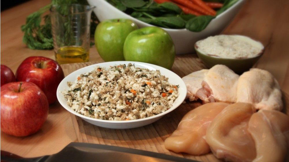 Yummy A Nutritious Food For Dogs Chicken Rice Bow Wow