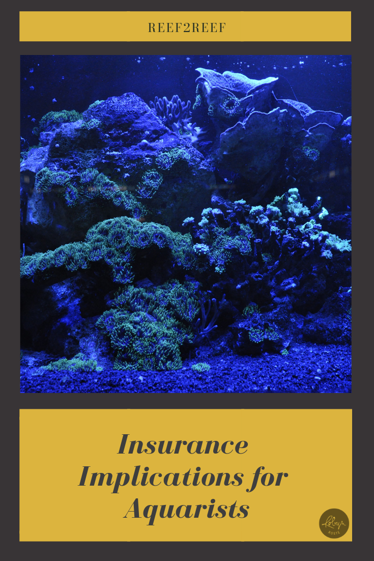 Intermediate Topic Insurance Implications For Aquarists