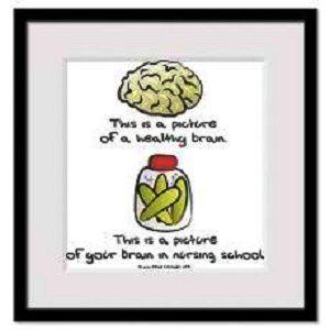 Brain On Nursing School Funny Nurse Quotes Nurse Quotes Nursing Students