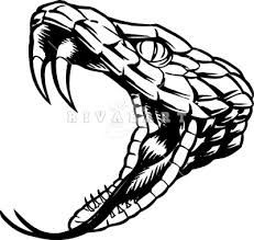 Image result for viper  drawing images