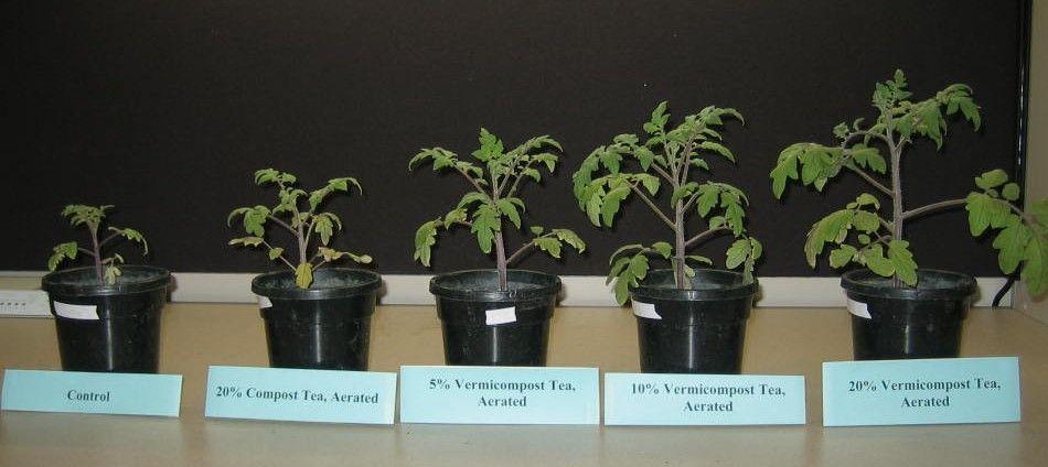 Suppression Of Plant Parasitic Nematodes And Arthropod 400 x 300