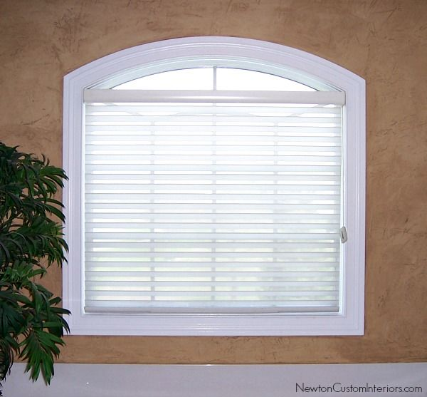 Eyebrow Window Treatments Window Coverings Blinds For