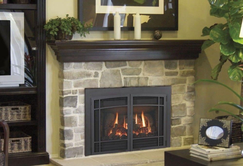 Best 25 gas fireplace inserts ideas on pinterest modern for Modern gas insert fireplace