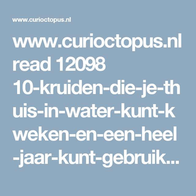 www.curioctopus.nl read 12098 10-kruiden-die-je-thuis-in-water-kunt-kweken-en-een-heel-jaar-kunt-gebruiken