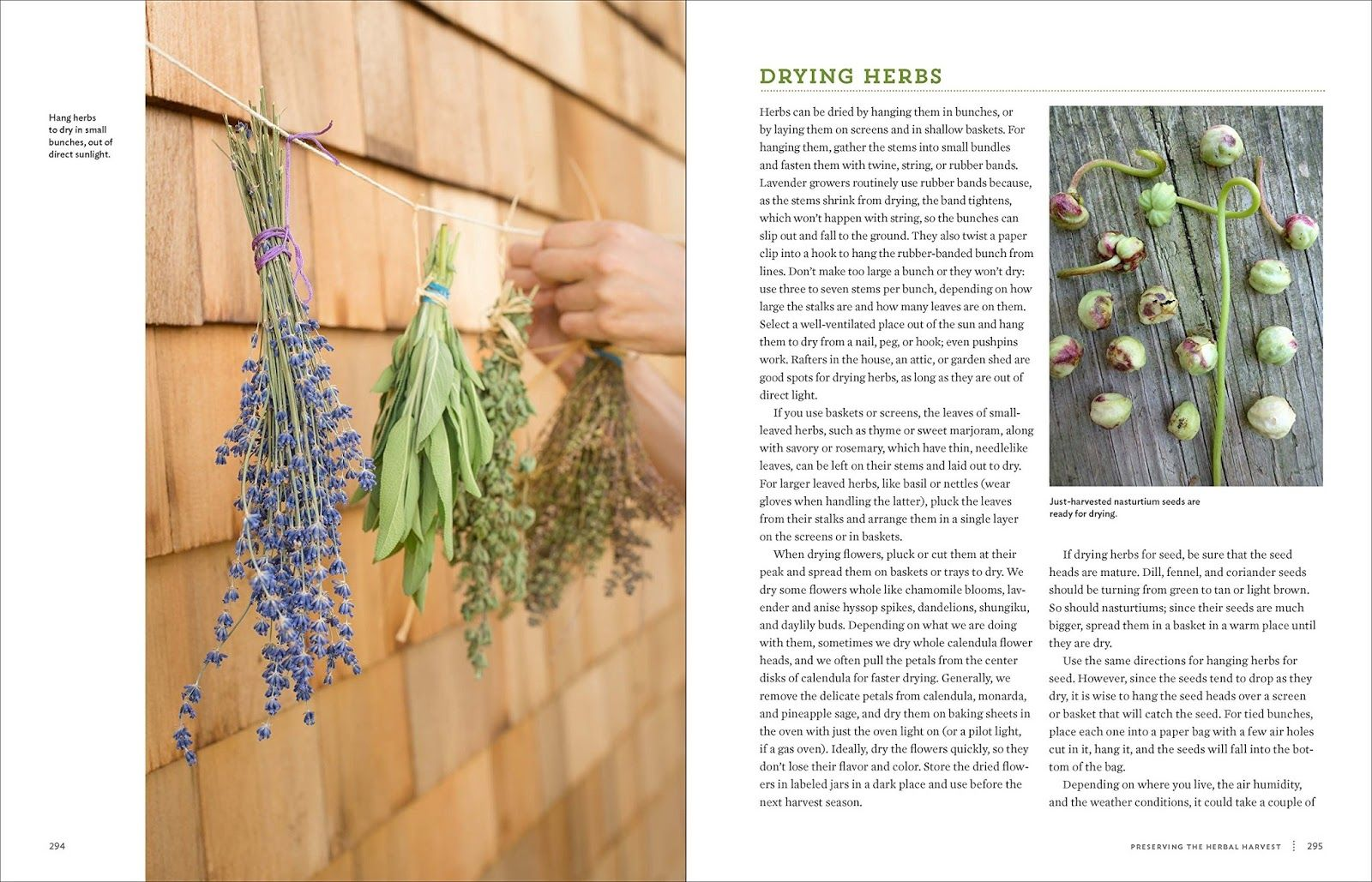 Start your indoor culinary herb garden - T I A Z Z A
