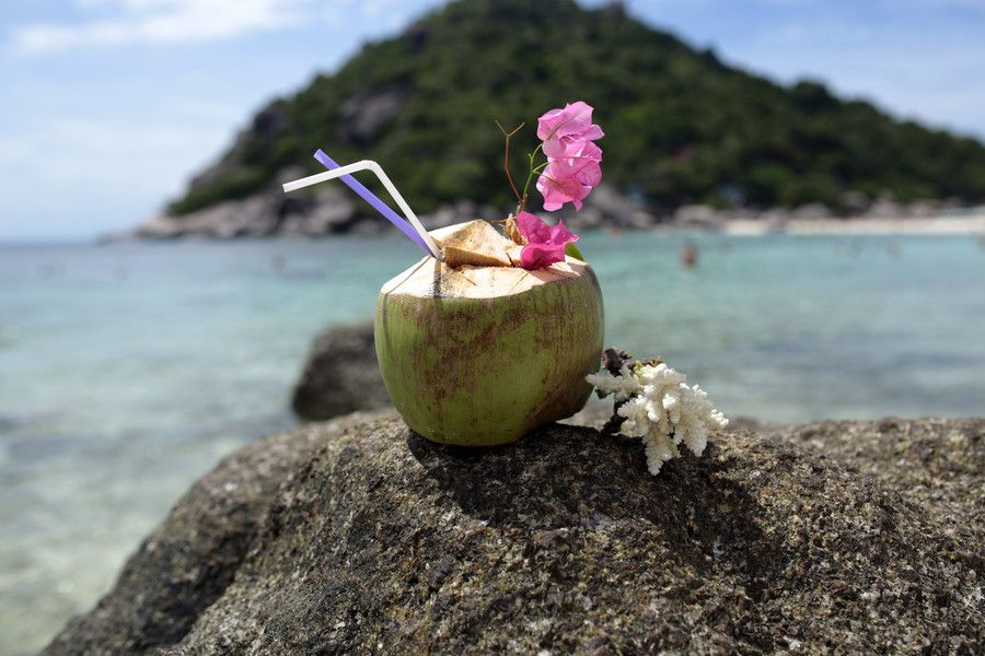 Drink out of a coconut